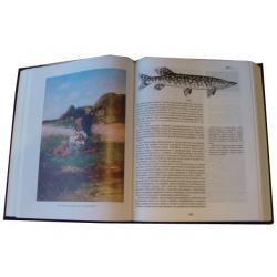 Энциклопедия рыбалки (в коробе)